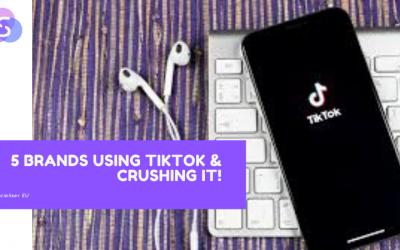 5 Brands Using TikTok & Crushing It!
